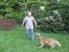 Scotty_und_DER_BALL2.tn.jpg