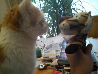 Timmy und Tiger