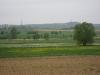 Fruehlingswiesen1.tn.jpg