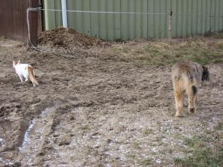 04-[01-02-2009] getrennte Wege1.tn.jpg