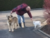 01-[Jan_2009] Spaziergang mit Scotty und Timmy1.tn.jpg