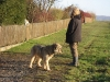 03-[Jan_2009] Spaziergang mit Scotty und Timmy3.tn.jpg