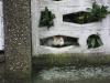 03-Suchbild mit Katze1.tn.jpg
